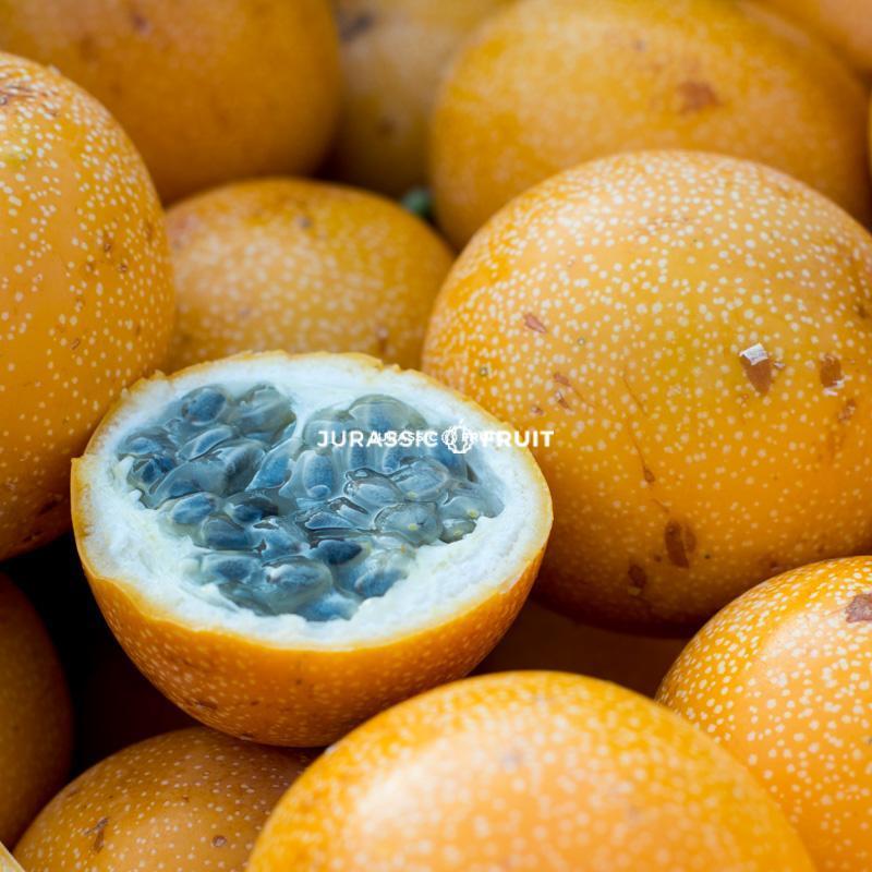 Fruit de la passion orange ou Grenadille