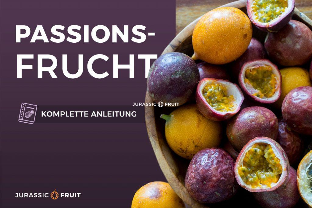 Passionsfrucht Anleitung