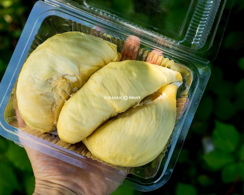 Durian Mon Thong en barquette