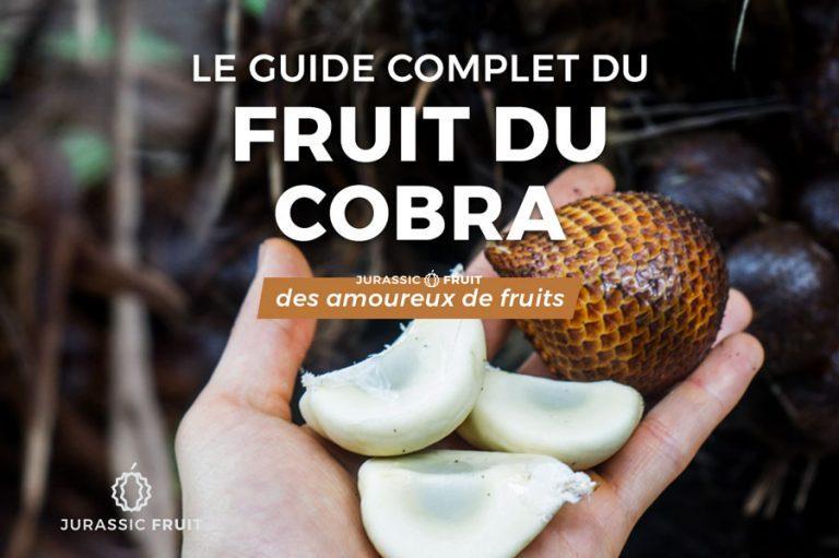 Guide Fruit du Cobra Salak
