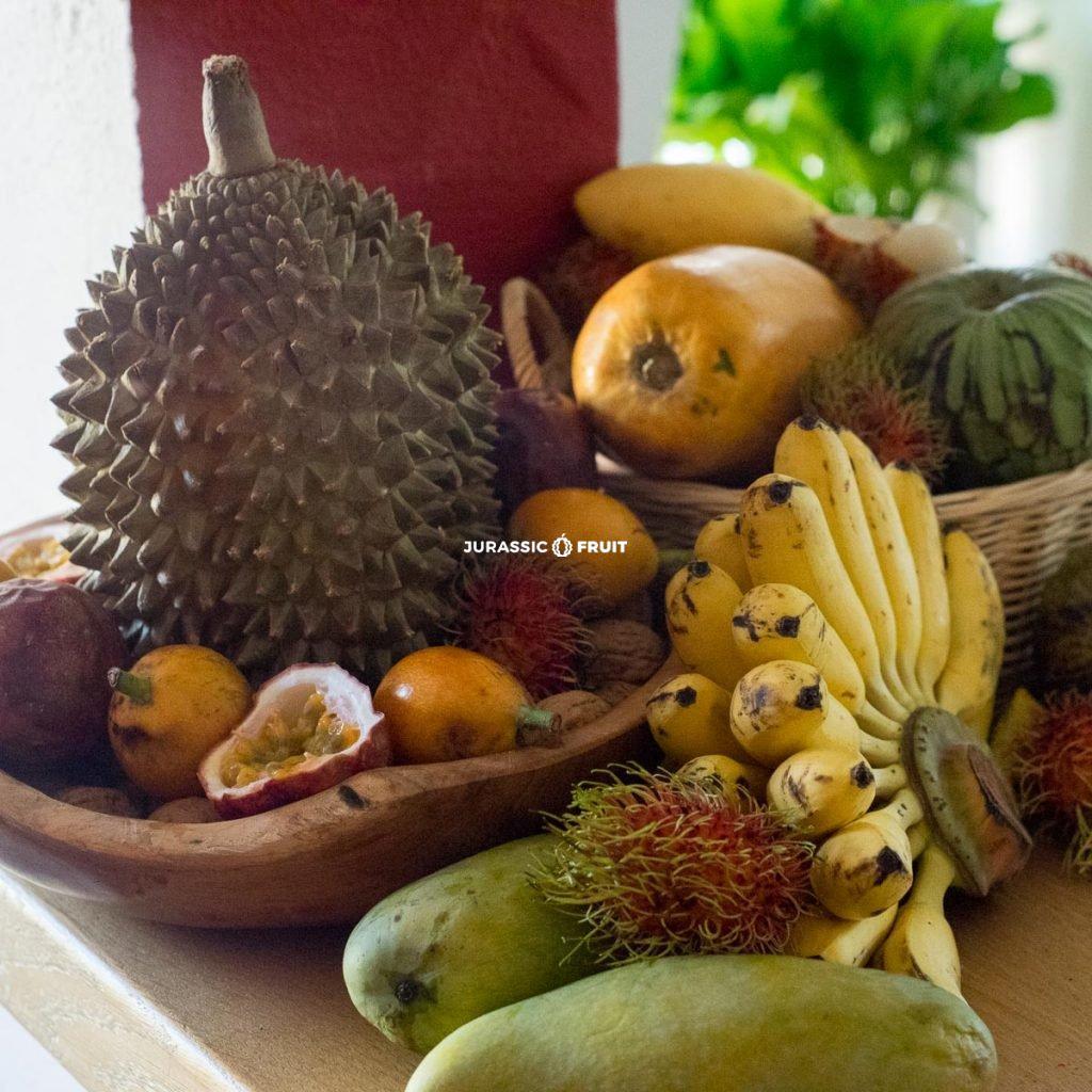Table avec Durian