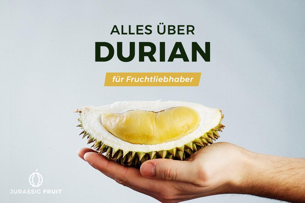 Alles über Durian