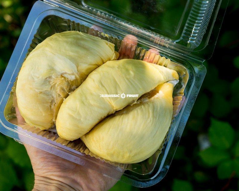 Durian, geschält